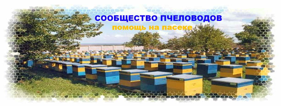 Сообщество пчеловодов